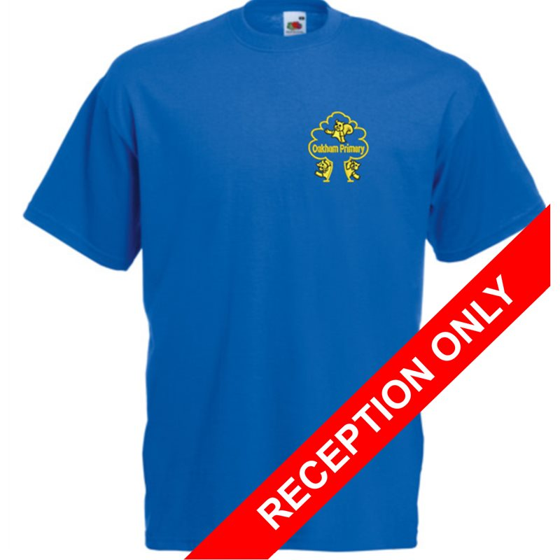 Blue cotton PE T Shirt with School logo